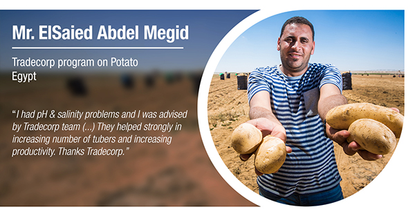 Mr. ElSaied Abdel Megid, from Egypt, has tested Tradecorp program in potatoes