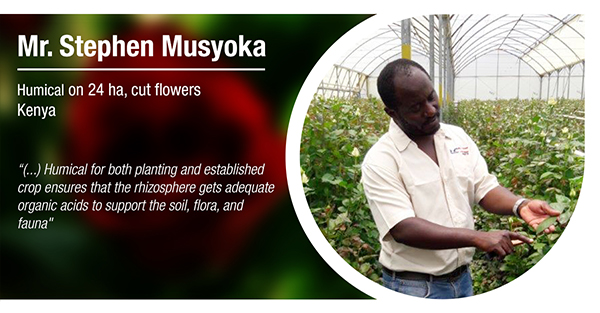 Mr Stephen Musyoka Kenia Humical