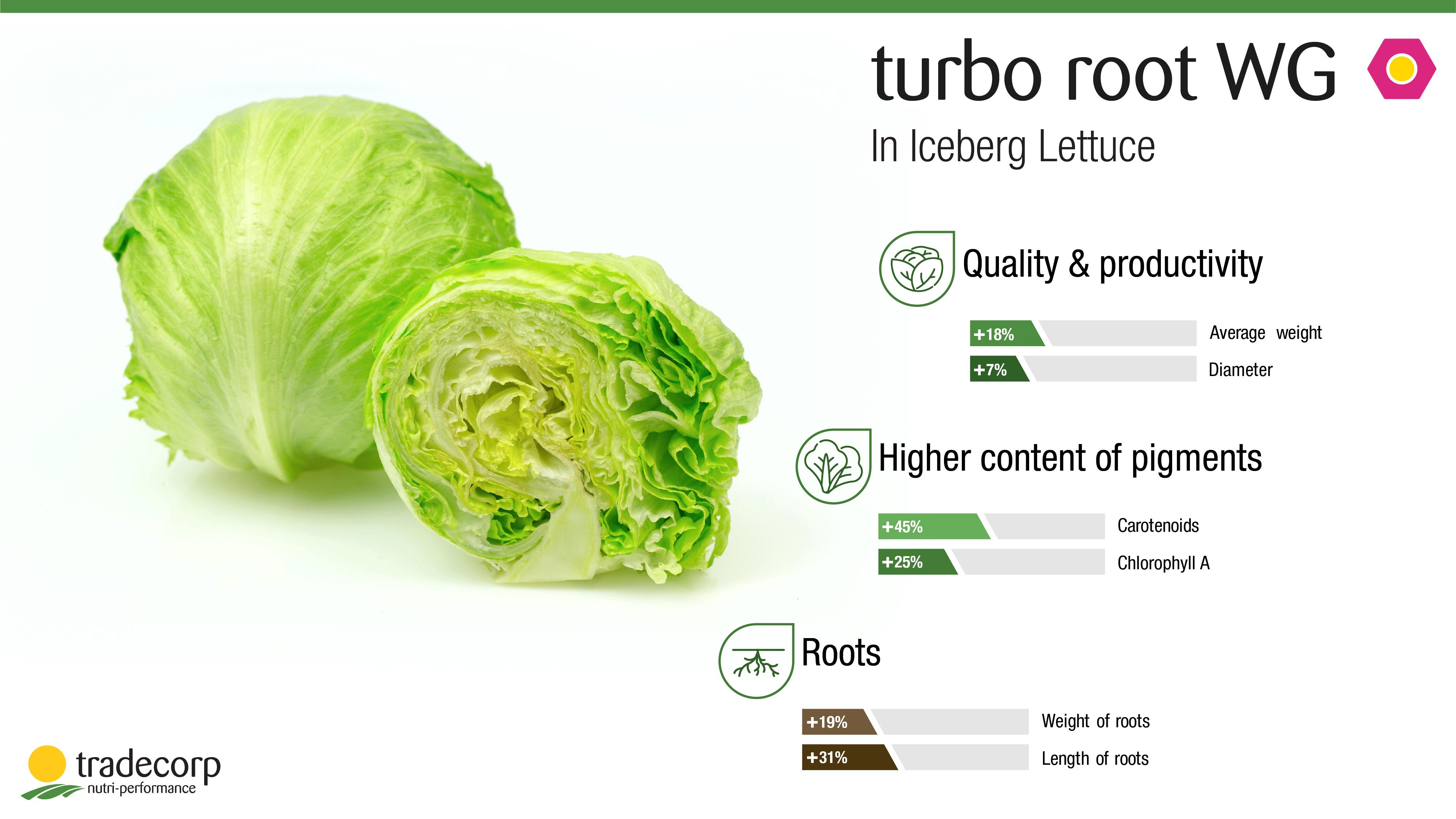 iceberg lettuce biostimulants