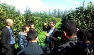Seminar on Citrus