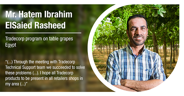 Mr. Hatem Ibrahim ElSaied Rasheed, from Egypt, has tested Tradecorp program in table grapes