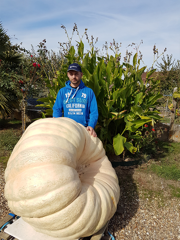 Mr Cédric Harrault is one of Tradecorp clients in France. This is his experience with Humifirst on pumpkin.