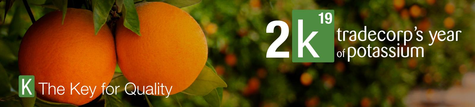 2K19, Tradecorp's year of Potassium