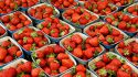 Strawberry harvests treated with biostimulants improve nutritional values, quality and shelf life